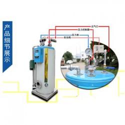 石锅鱼必备50公斤小型燃气蒸汽锅炉