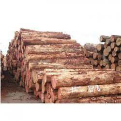 大风山收购松木企业一览表