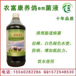 喂鸽子防病用的益生菌液有哪些厂家生产?