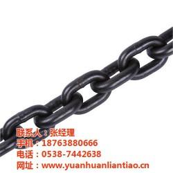 起重链条,起重链条供应商,泰安鑫洲机械公司