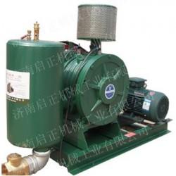 低噪音环保风机——回转式鼓风机,主要用于