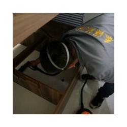 室内除甲醛代理商 供应优质的室内空气治理