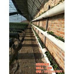 农家院、旭丰农家院出售、近郊农家院(优质